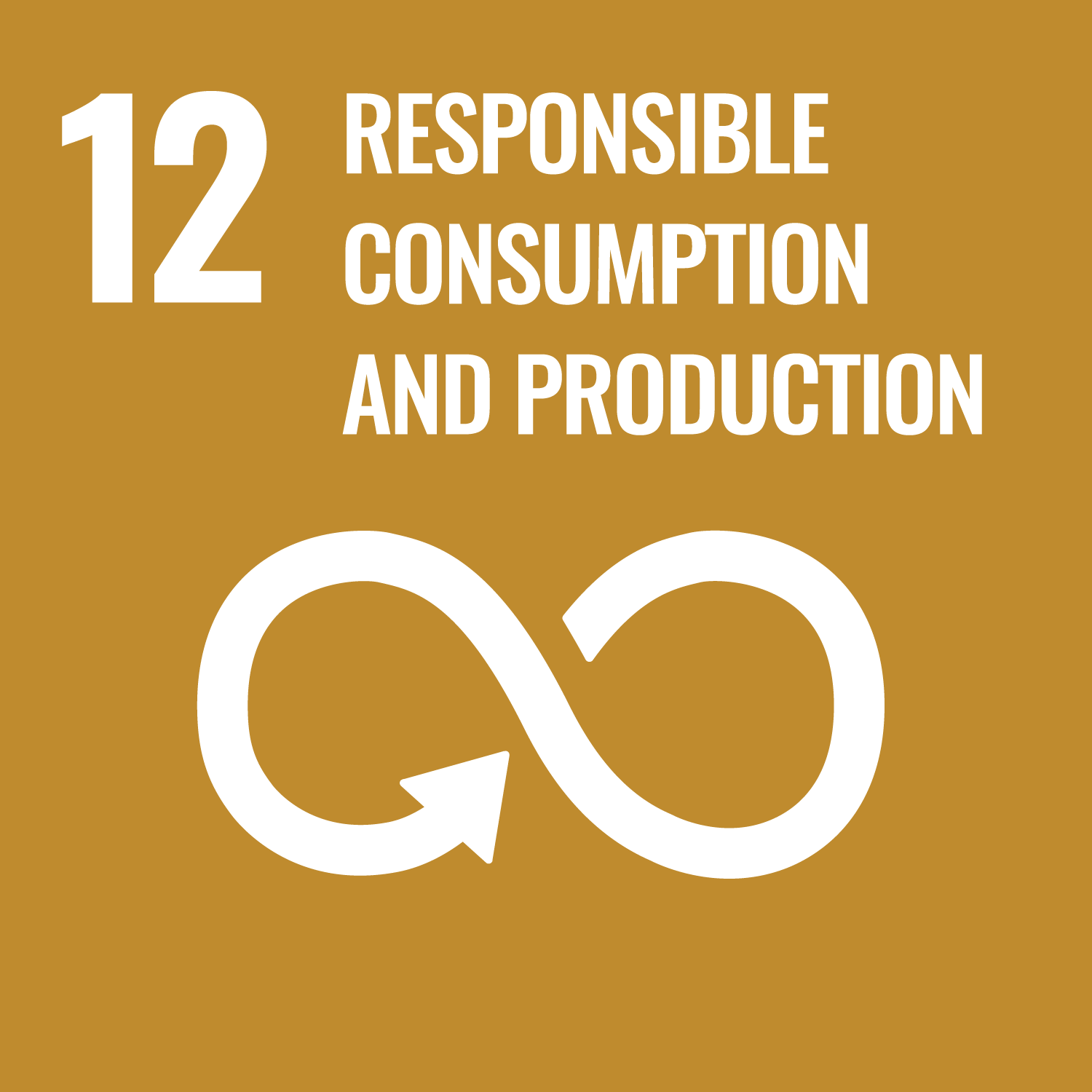 Sustainable Development Goals – Responsible Consumption and Production