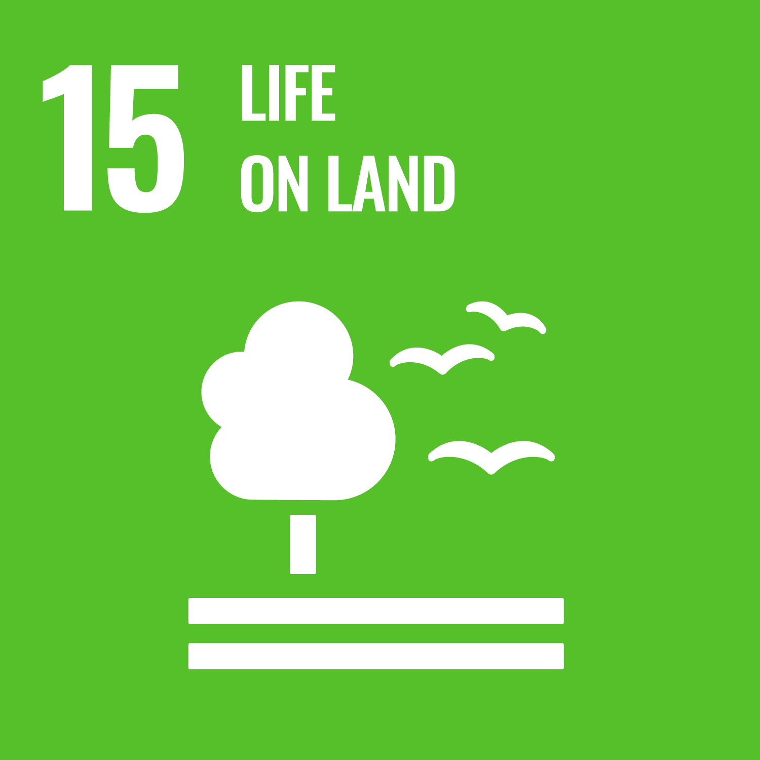 Sustainable Development Goals – Life on Land