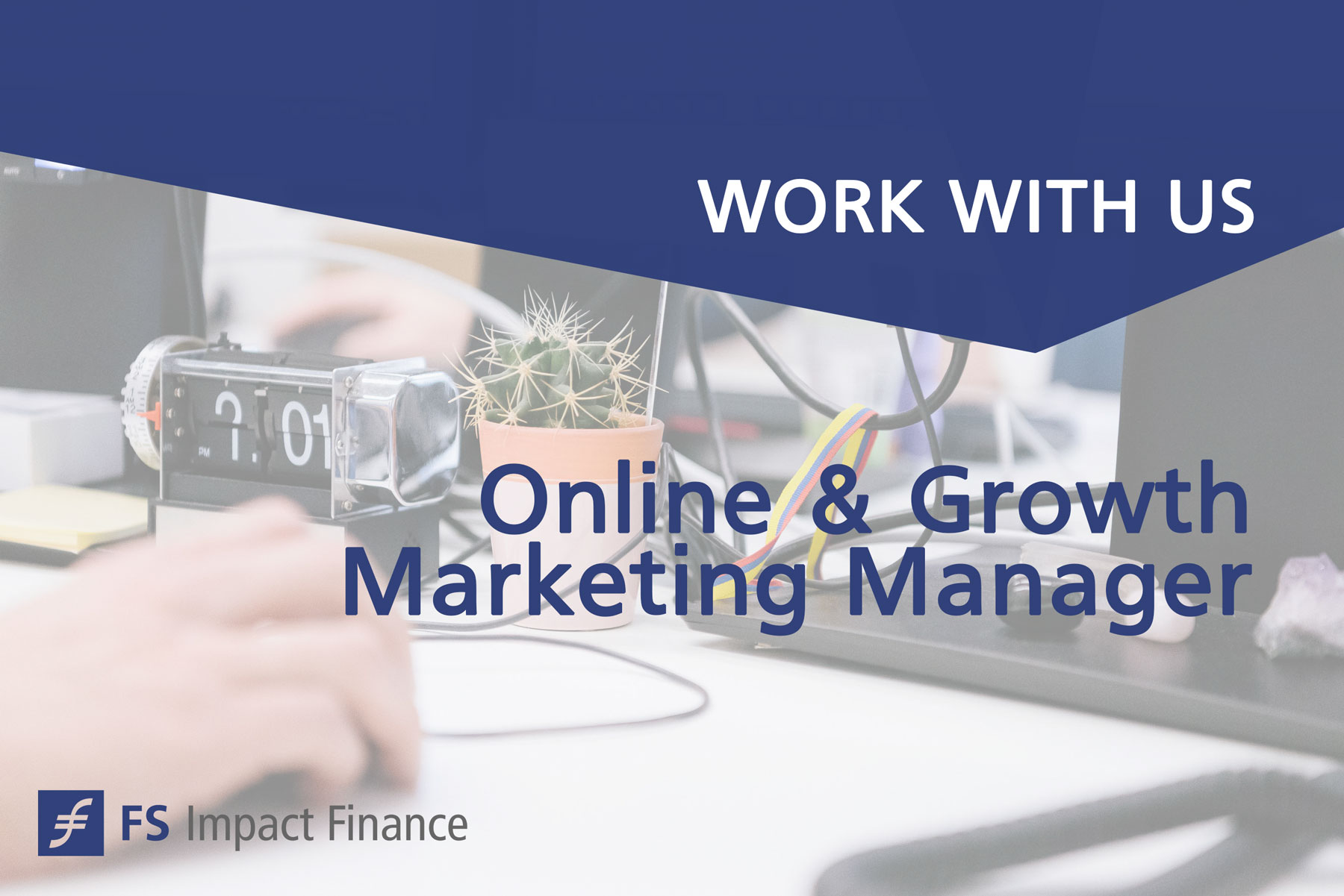 Online & Growth Marketing Manager
